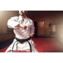 Различните видове спортни кимона и тяхната история